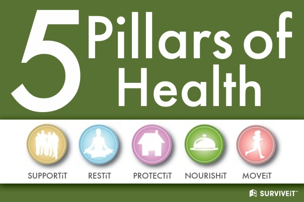 5 pillars of health